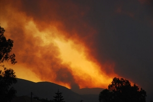 Climate Change and Utah Wildfires--KCPW